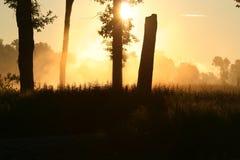Sonnenaufgang 1 stockbild