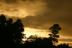 Sonnenaufgang in Afrika Stockfotos