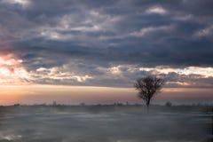 Sonnenaufgang auf dem Gebiet stockfotografie