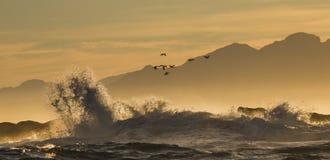 Sonnenaufgang auf dem Ozean Ansicht über Stadt und Tabellen-Berg vom seaa versehen mit Seiten Falscher Schacht Berühmter Kanonkop Lizenzfreie Stockfotos