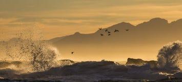 Sonnenaufgang auf dem Ozean Ansicht über Stadt und Tabellen-Berg vom seaa versehen mit Seiten Falscher Schacht Berühmter Kanonkop Lizenzfreie Stockbilder