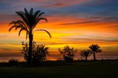 Sonnenaufgang auf dem Roten Meer Stockfotos