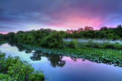 Sonnenaufgang auf dem See lizenzfreie stockfotos