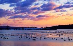 Sonnenaufgang auf dem See stockfoto