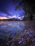 Sonnenaufgang auf dem See voll von Seerose ` s Stockbilder