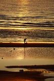 Sonnenaufgang auf dem Strand lizenzfreie stockfotografie