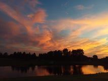 Sonnenaufgang auf den Kiefern lizenzfreie stockfotografie