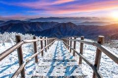 Sonnenaufgang auf Deogyusan-Bergen bedeckt mit Schnee im Winter Stockfotografie