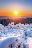 Sonnenaufgang auf Deogyusan-Bergen bedeckt mit Schnee im Winter Stockfotos