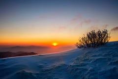 Sonnenaufgang auf Deogyusan-Bergen bedeckt mit Schnee im Winter, Korea Stockfotos