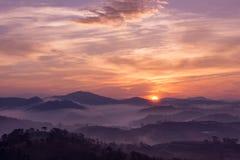 Sonnenaufgang auf einem Kiefernhügel Lizenzfreie Stockbilder