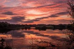 Sonnenaufgang auf einem Teich stockbilder