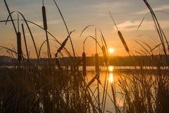 Sonnenaufgang auf einem Ufer Stockfotografie