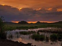Sonnenaufgang auf einem wild lebende Tiere Sumpf Stockfotos