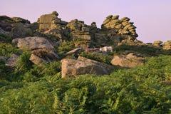 Sonnenaufgang auf Jagdhund-Felsen Stockfotografie