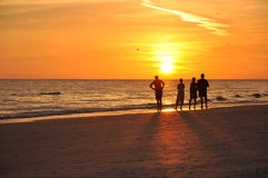 Sonnenaufgang auf karibischem Strand Stockfotografie