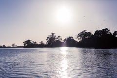 Sonnenaufgang auf Leven River in Ulverstone Tasmanien Stockfotografie