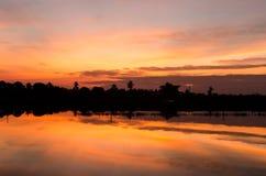 Sonnenaufgang auf orange Himmel mit Baumschattenbild Stockbilder