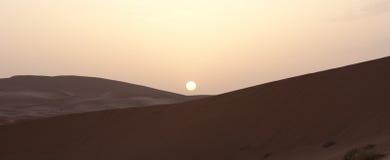 Sonnenaufgang auf Sandwüste Lizenzfreie Stockfotos
