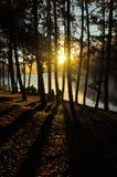 Sonnenaufgang auf See stockfotografie