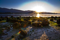 Sonnenaufgang auf Strand Lizenzfreies Stockfoto