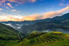 Sonnenaufgang auf terassenförmig angelegten Reisfeldern Stockfotografie