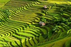 Sonnenaufgang auf terassenförmig angelegten Reisfeldern Lizenzfreies Stockfoto