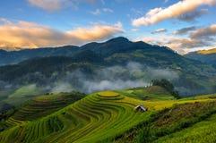 Sonnenaufgang auf terassenförmig angelegten Reisfeldern Stockfotos