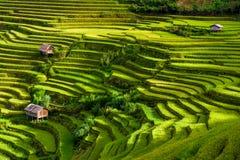 Sonnenaufgang auf terassenförmig angelegten Reisfeldern Lizenzfreies Stockbild