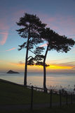 Sonnenaufgang auf Torquay Stockbild