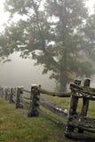 Sonnenaufgang-Baum und Zaun im Nebel Lizenzfreie Stockfotos
