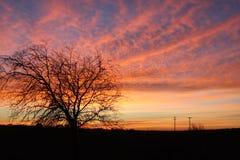 Sonnenaufgang bei der Arbeit Stockfotografie