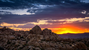 Sonnenaufgang bei Joshua Tree National Park Stockfotos