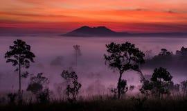 Sonnenaufgang bei Tung Salang Luang Lizenzfreies Stockbild