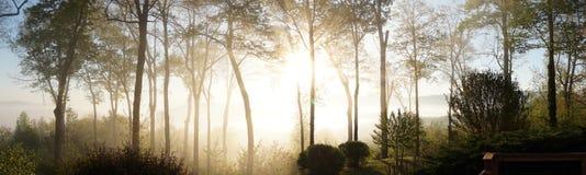 Sonnenaufgang am Berg lizenzfreies stockfoto