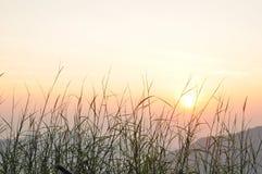Sonnenaufgang am Berg auf Wat Pha Kaew, Thailand Lizenzfreies Stockfoto