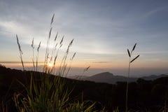 Sonnenaufgang am Berg Inthanon Stockbilder