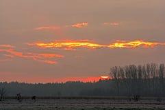 Sonnenaufgang in den Wolken Stockfoto