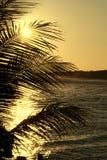 Sonnenaufgang in der Dominikanischen Republik Stockfotografie