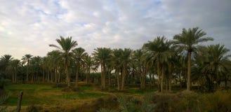 Sonnenaufgang in der irakischen Landschaft Lizenzfreies Stockbild