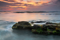 Sonnenaufgang an der Palmen-Küste Stockfoto