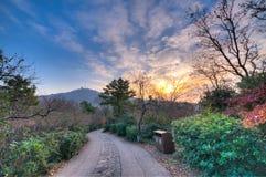Sonnenaufgang an der Spitze des Berges Stockbilder