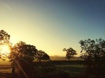 Sonnenaufgang des frühen Morgens Stockfoto