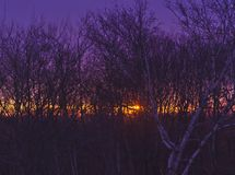 Sonnenaufgang 021 des frühen Morgens stockbilder
