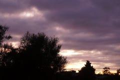 Sonnenaufgang des frühen Morgens in Waikato Neuseeland stockfotografie