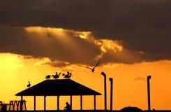 Sonnenaufgang des Südstrandes Stockfotos