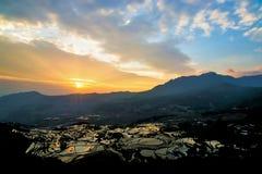 Sonnenaufgang des terassenförmig angelegten Feldes des Reises lizenzfreie stockfotografie