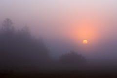 Sonnenaufgang durch den Nebel Lizenzfreie Stockbilder