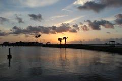 Sonnenaufgang durch die Palmen Lizenzfreies Stockbild