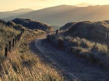 Sonnenaufgang durch Sanddünen Stockfotografie
